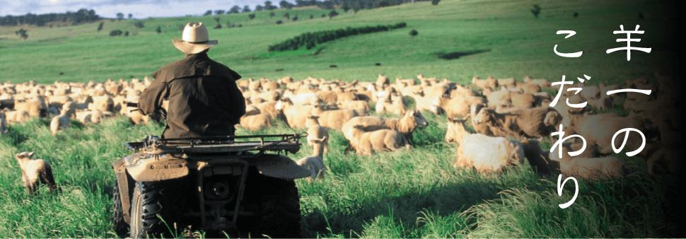 羊一のこだわり